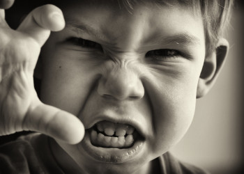 Come gestire un duenne aggressivo