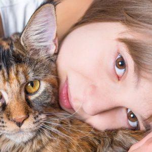 gatti bambini gravidanza