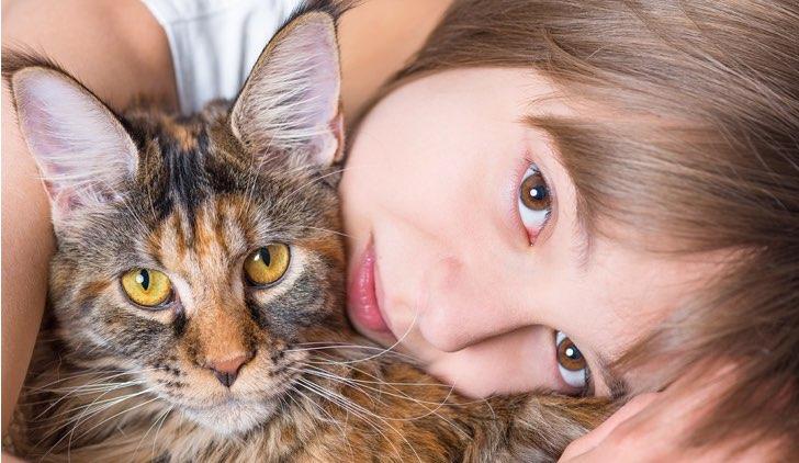 Bambini E Gatti In Casa Quali Sono I Pro E I Contro