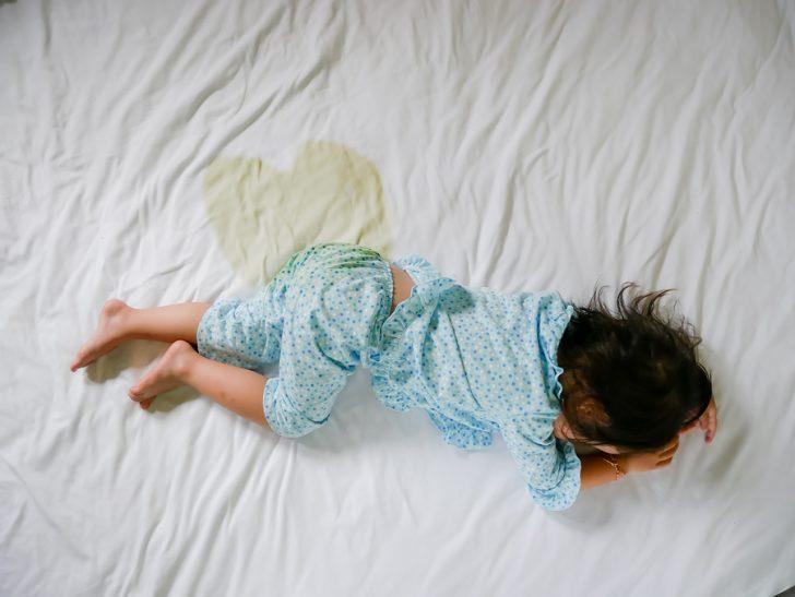 Cosa dire a tuo figlio se fa la pip a letto - Cane pipi letto ...