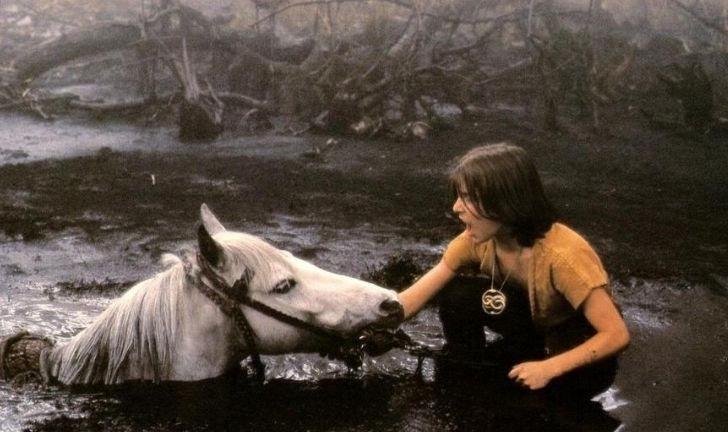 cavallo de la storia infinita